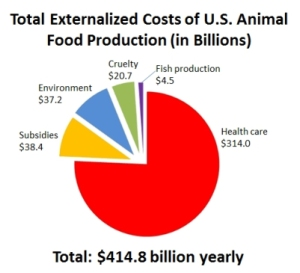 animal-food-production